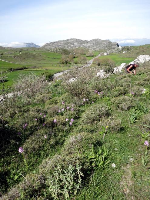 Le centre de la Crète du 3 au 6 avril 2014 31_spi10