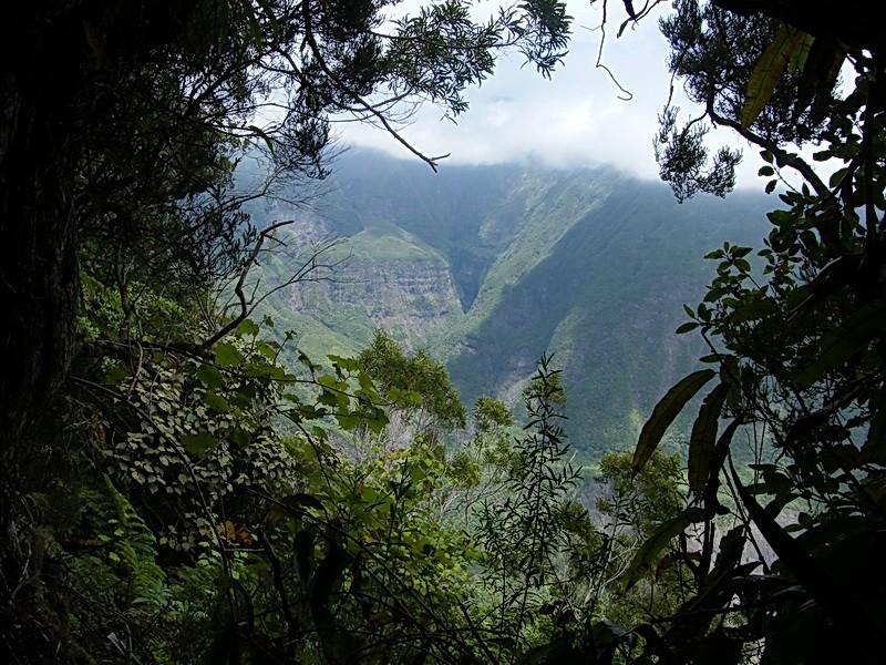 Troisième voyage à la Réunion 38_pla10