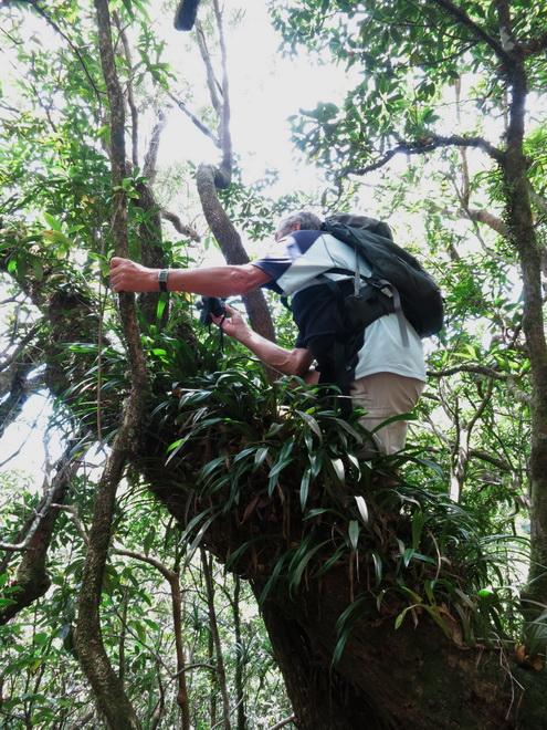 Troisième voyage à la Réunion 54_ede10