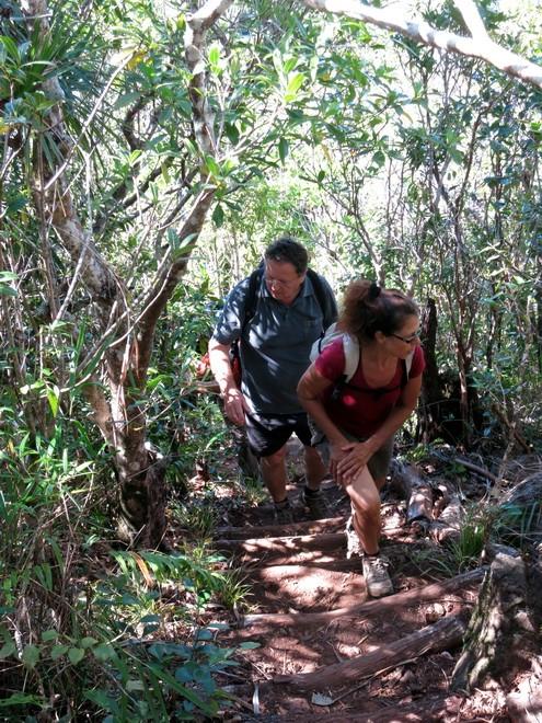Troisième voyage à la Réunion 81_pit10