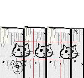 Le chat de la palissade...  - Page 5 311