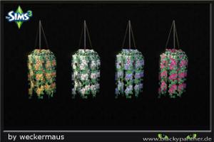 Цветы - Страница 5 Imag1598