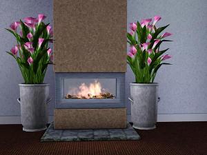 Цветы - Страница 2 Imag1599