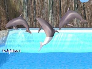 Все для аквариумов, водоемов - Страница 2 Imag2214