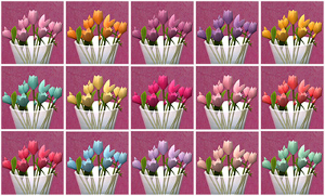 Цветы для дома - Страница 8 Imag2350