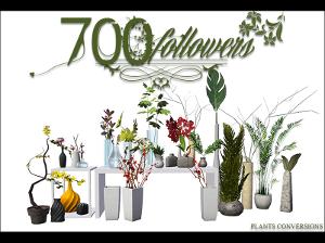 Цветы для дома - Страница 8 Image107