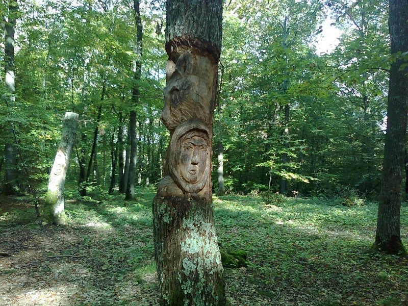 Les chasses aux sorcières d'antan Photo012