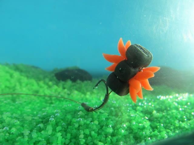 Amateurs de pêche du chevesne ? Un leurre à carpe peut-il marcher ? Image21