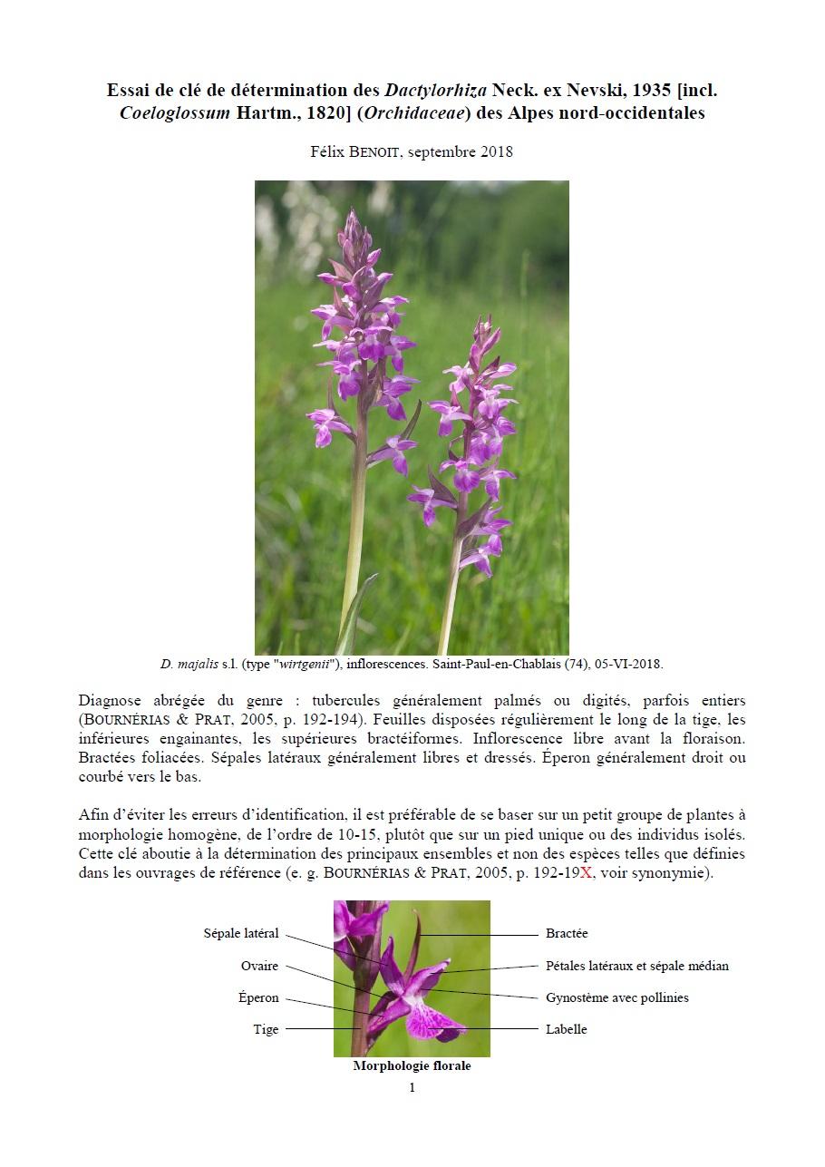 Essai de clé de détermination des Dactylorhiza des Alpes 111