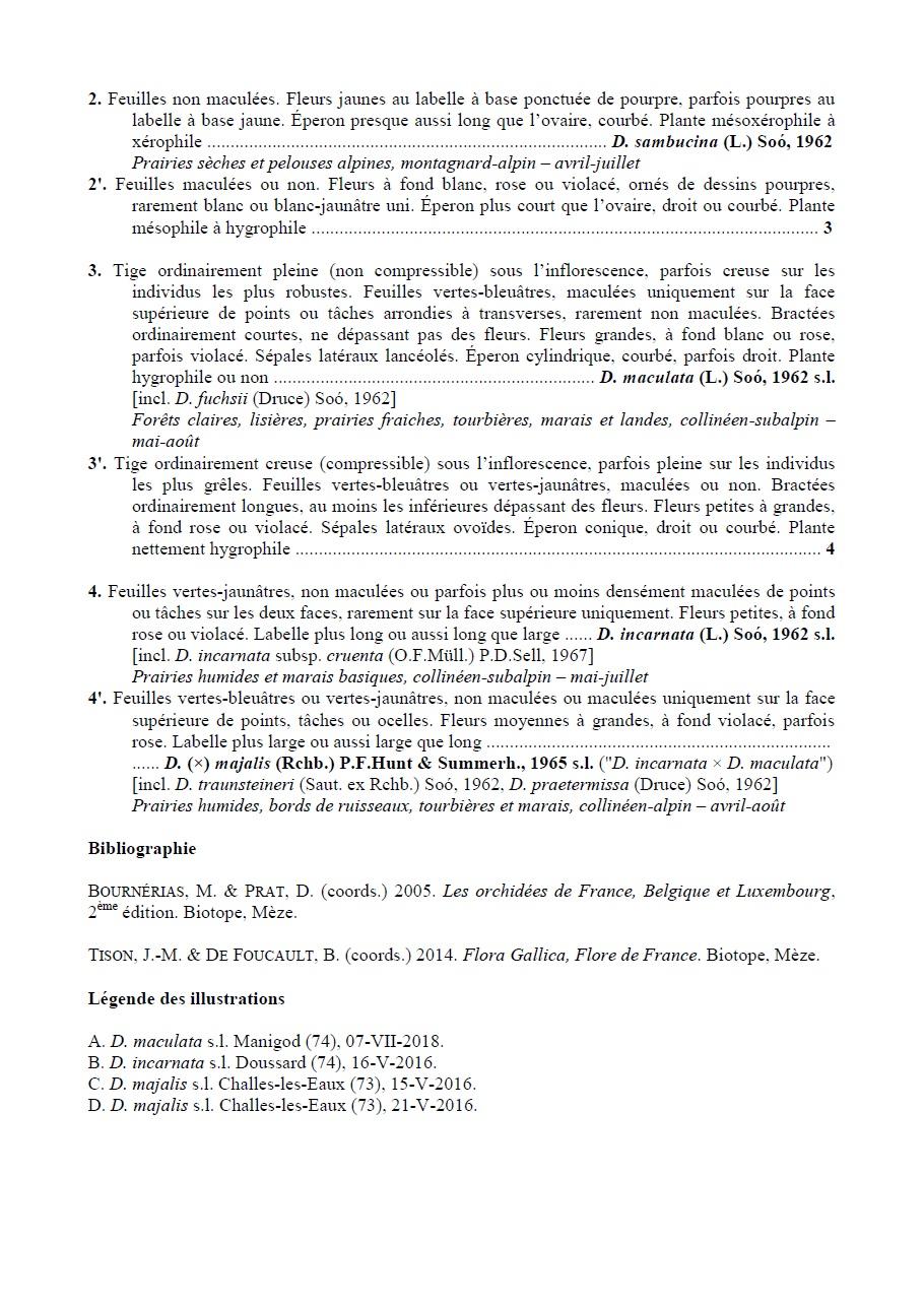 Essai de clé de détermination des Dactylorhiza des Alpes 210