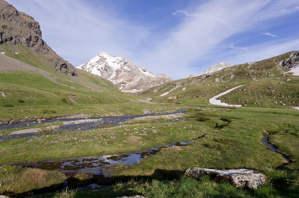 Un mois de juillet bien rempli en Vanoise Imgp0911