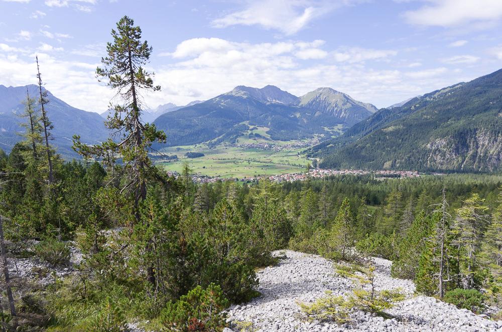 Août et début septembre dans les Alpes Imgp3714