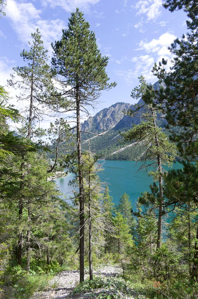 Août et début septembre dans les Alpes Imgp3715
