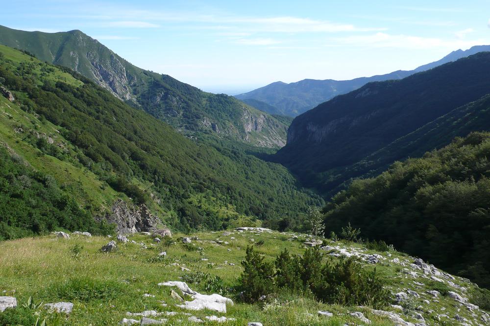 Visite dans le Parco naturale Alpi Marittime 22/07 L1300620