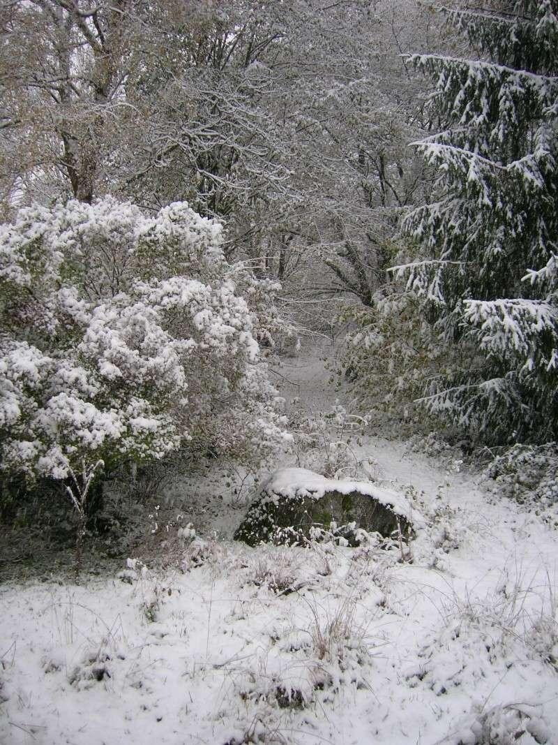 Neige ou autre impossibilité de se rendre dans notre établissement... - Page 6 Dscn3823