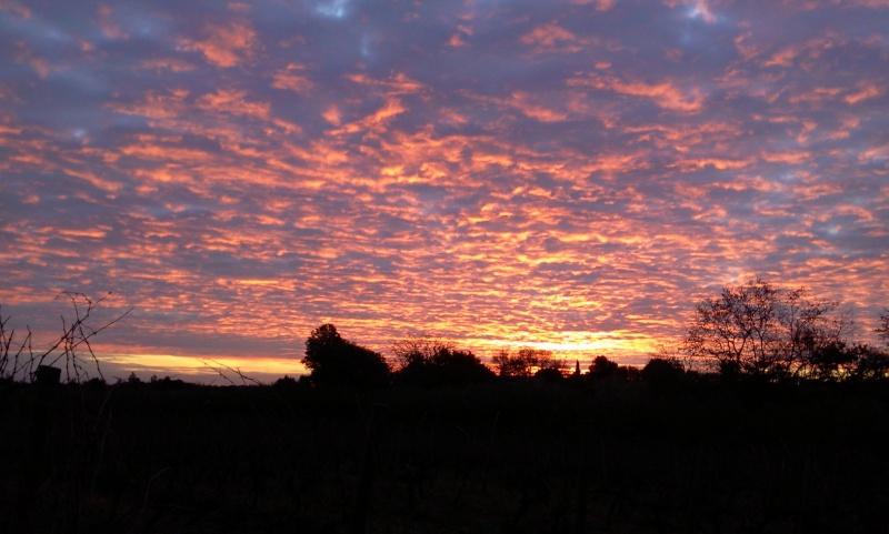 photos de nuages et arbres de Prairie Photo014