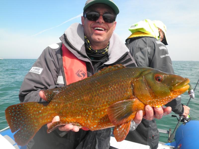 SAILTICA Fishing Samedi 3 Mai et Dimanche 4 Mai 2014 à Pornichet - Page 14 Vieill10