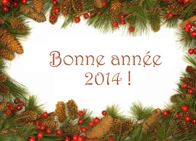 Bonne année  Cuisin10