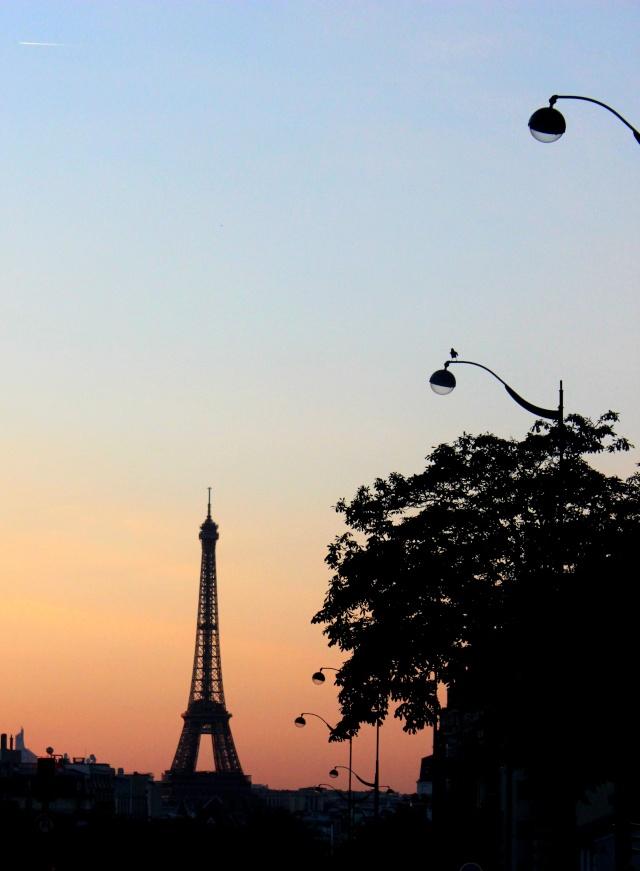 La photographie (quelle originalité !) - Page 2 Eiffel10