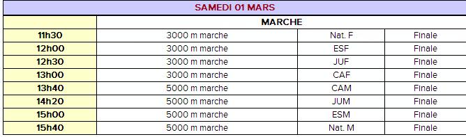 Championnat de France salle; Lyon; 1er mars 2014 Cht_in10