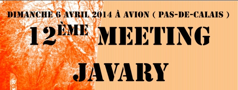 Meeting Javary; Avion (62); 10000, 5000, etc. : 06/04/2014 Javary10