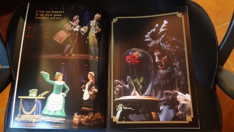 La Belle et la Bête - Le Musical de Brodway - Page 6 Dsc09629
