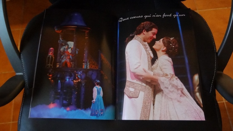 La Belle et la Bête - Le Musical de Brodway - Page 6 Dsc09734