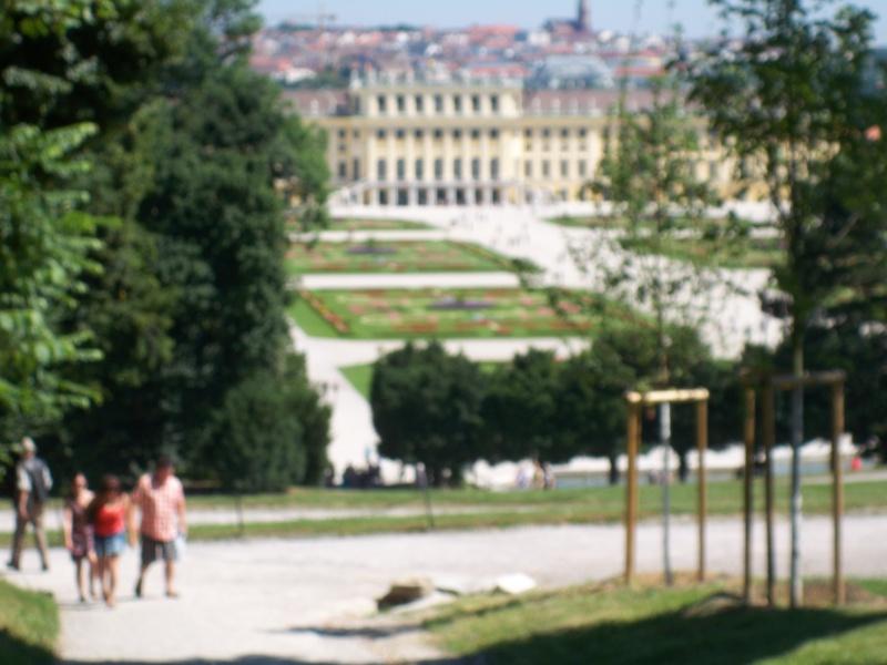 Le palais de Schönbrunn - Page 3 100_1225