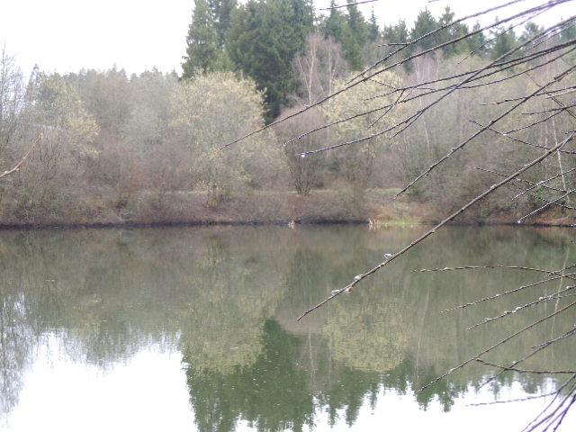 La nature est en avance . 2014-010