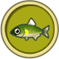 [Liste] Toutes les informations concernant les poissons Ayu10