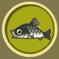 [Liste] Toutes les informations concernant les poissons Barbea10