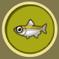 [Liste] Toutes les informations concernant les poissons C389pe10