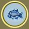 [Liste] Toutes les informations concernant les poissons Carang10