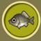 [Liste] Toutes les informations concernant les poissons Carass10