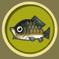 [Liste] Toutes les informations concernant les poissons Carpe10