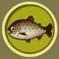 [Liste] Toutes les informations concernant les poissons Dai20y10