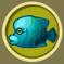 [Liste] Toutes les informations concernant les poissons Napolc10