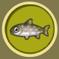 [Liste] Toutes les informations concernant les poissons Omble10