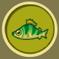 [Liste] Toutes les informations concernant les poissons Perche10