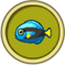 [Liste] Toutes les informations concernant les poissons Poisso12