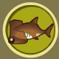 [Liste] Toutes les informations concernant les poissons Requin12