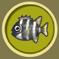 [Liste] Toutes les informations concernant les poissons Scarus10