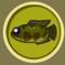 [Liste] Toutes les informations concernant les poissons Tc3aat11