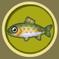 [Liste] Toutes les informations concernant les poissons Truite10