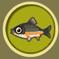 [Liste] Toutes les informations concernant les poissons Vandoi10