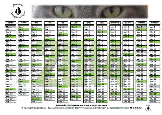 Calendriers 2014 Modale10
