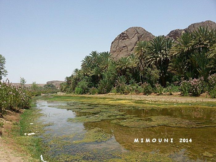 Suivez Mimouni junior sur les traces de nos ancestres Amazigh , Marrakech Merzouga Rissani dades - Page 2 Mimoun61