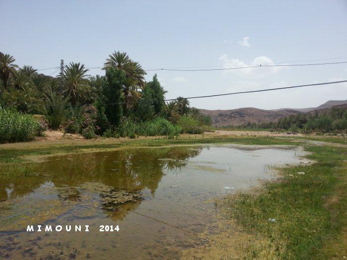 L'autre Maroc , Circuit découverte Ouarzazate dades Taroudant non stop - Page 2 Mimoun62
