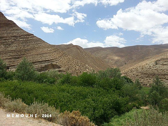 L'autre Maroc , Circuit découverte Ouarzazate dades Taroudant non stop - Page 2 Mimoun82