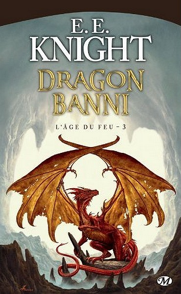 L'Âge du feu Tome 3 : Dragon Banni Dragon10